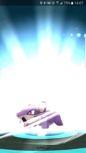 6. Tiến Hóa Pokemon